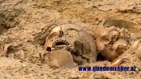 Bakıda Qanlı gölün ətrafında3 insan kəlləsi tapıldı -FOTOLAR